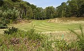Parkstone Golf Club - Poole - Golf
